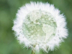 affichage environnemental millet